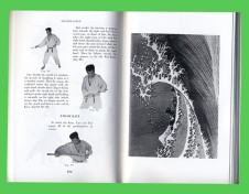 INVITATION_____________________________________groundwork___rum46 -  the wave is the title of a reading-scripting event investigating Yves Klein, The foundation of Judo (2009)